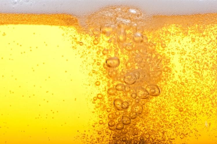 Gli ingredienti farmacologici della birra