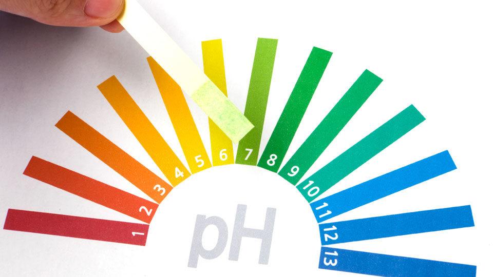 Độ pH là gì? Mức độ pH tối ưu đối với sức khỏe con người